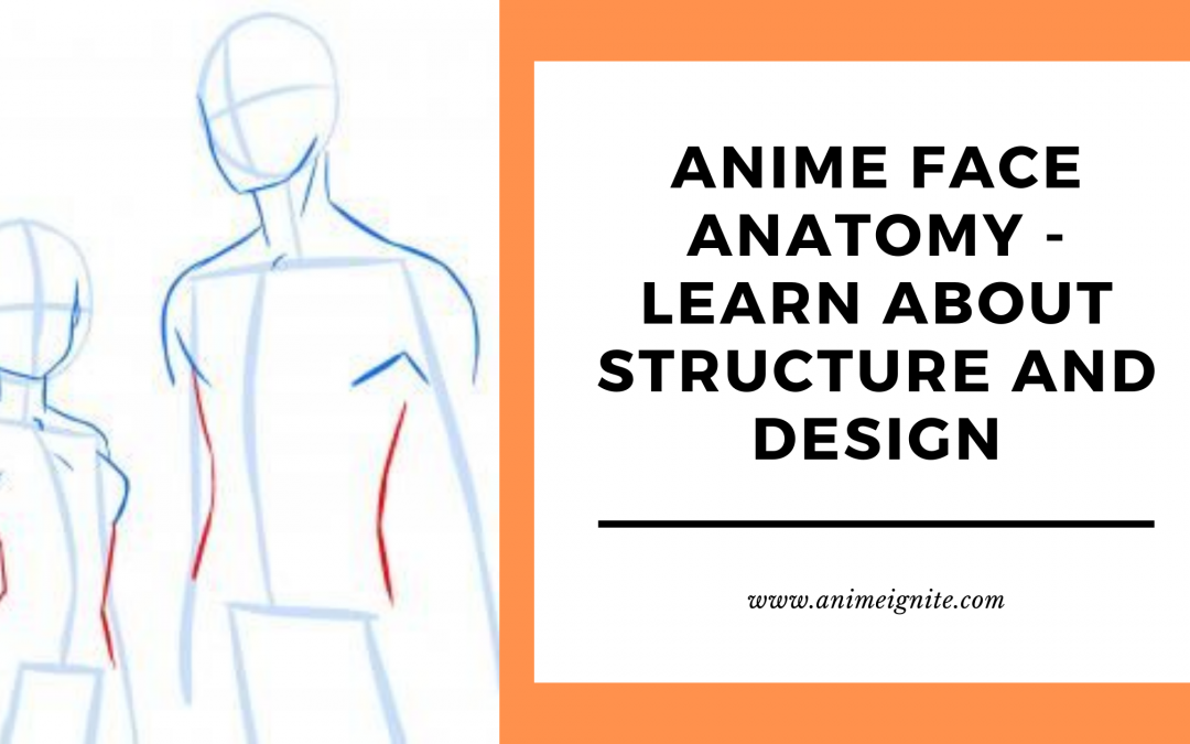 Anime Face Anatomy – Learn all about Structure and Design
