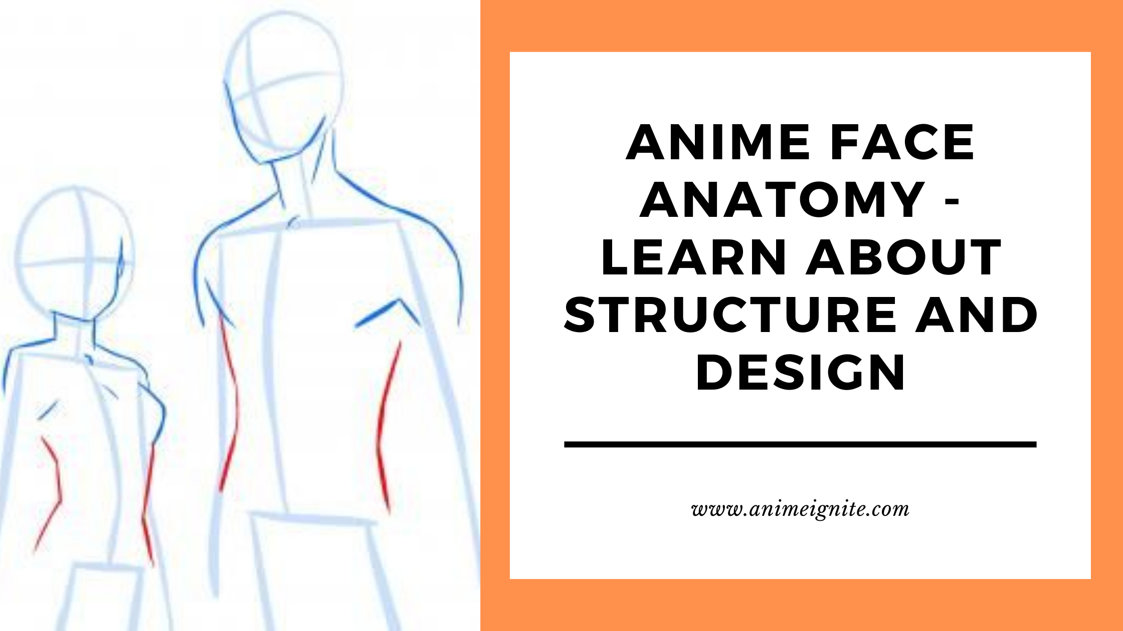 Anime Face Anatomy - Learn all about Structure and Design
